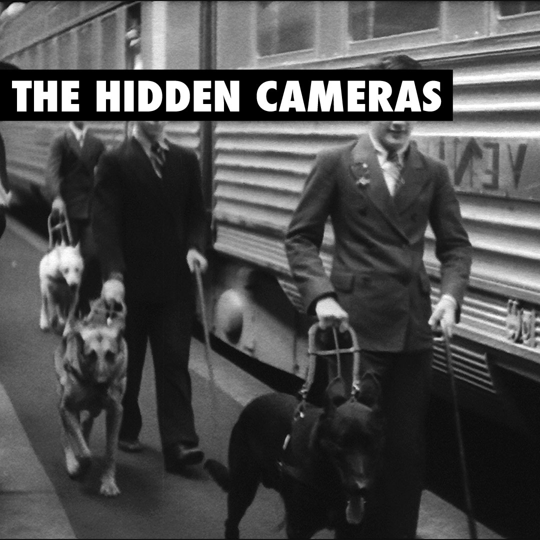 The Hidden Cameras - Year of the Spawn Artwork